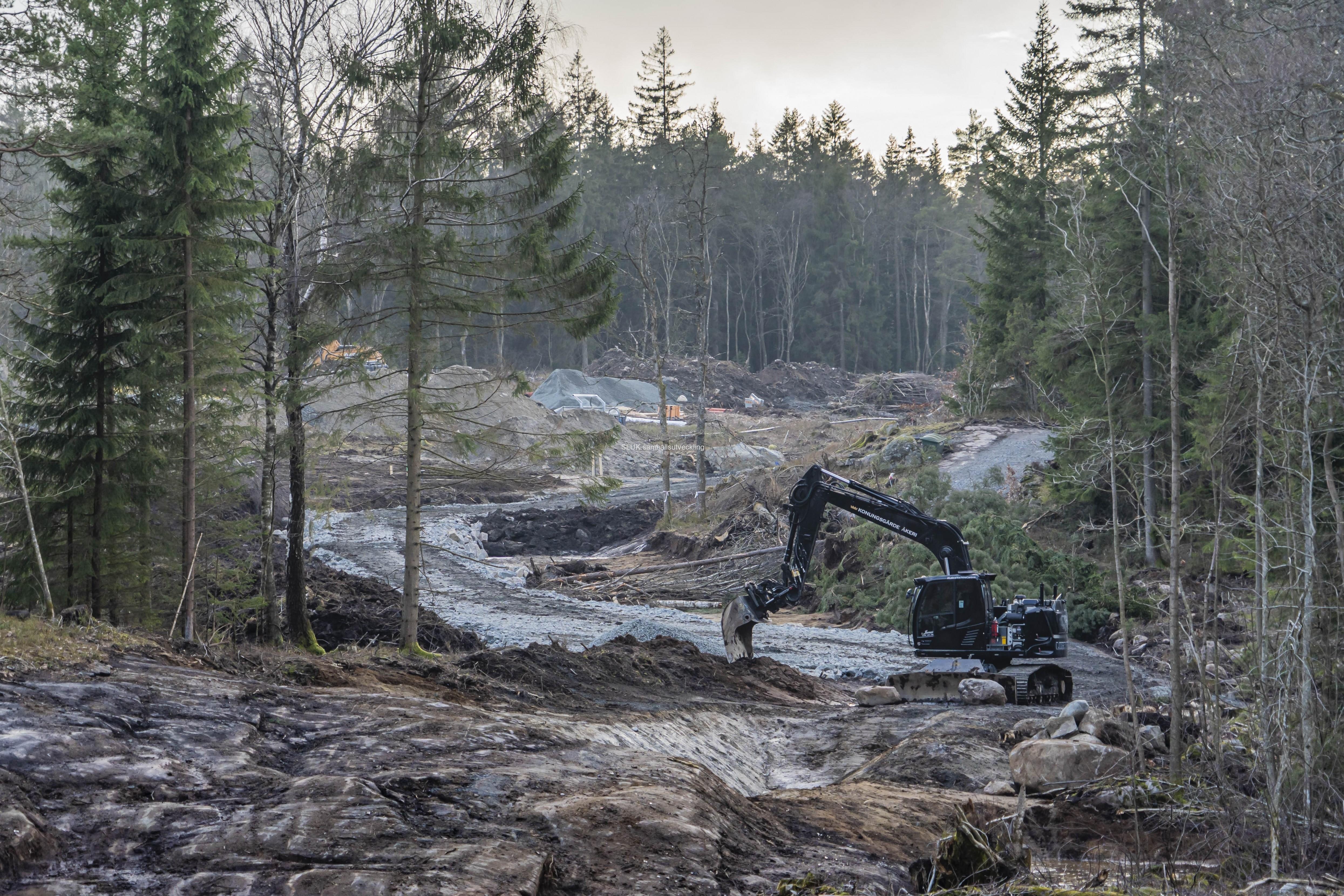 Planen är att plantera ny skog, men det kräver skötsel under 10-15 år. Nu finns bara en kraftledningsgata från det planerade bostadsområdet till Kåsjön.