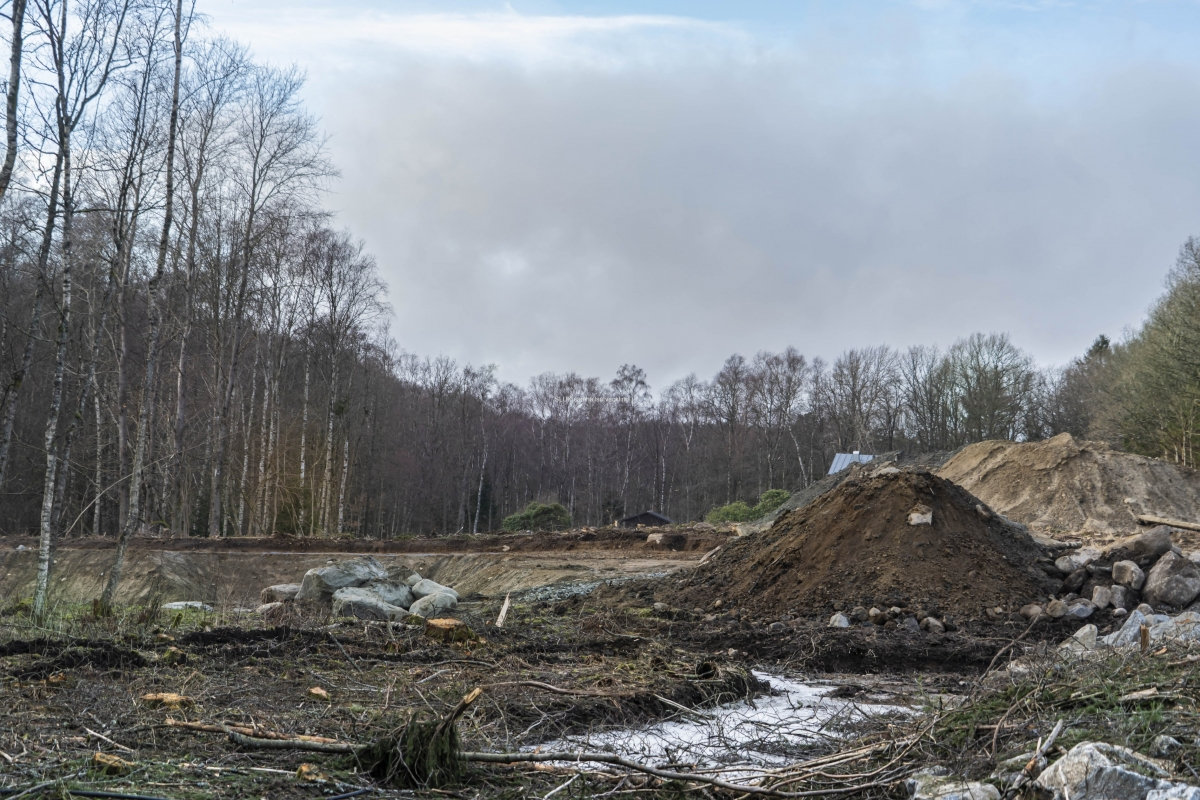 Entreprenören Västmark avverkade skogen i somras. Kommunen fick vetskap att 6000 kvm ek- och lövskog har avverkats av misstag.