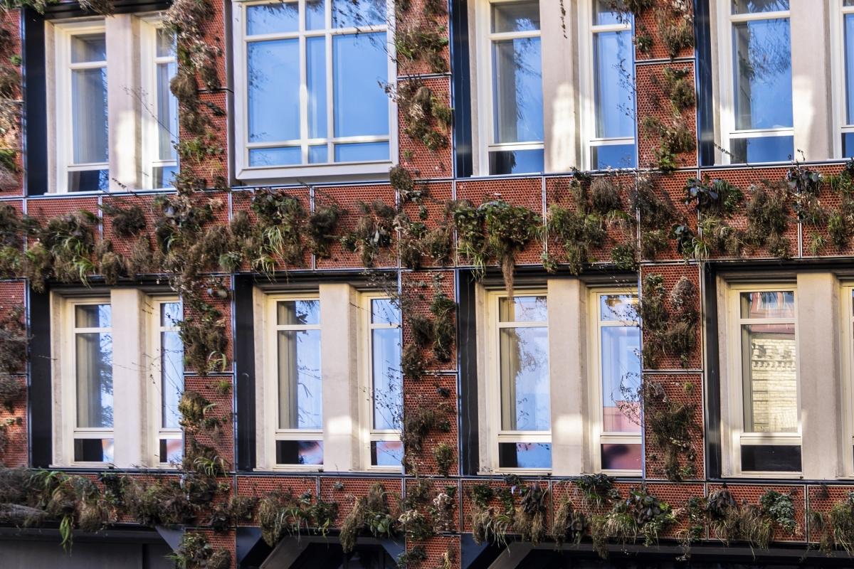 På Södra Larmgatan, nära Biopalatset har en fastighet fått en fasad med levande växter.