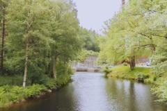 Naturbild i Wendelsberg, strax vid Mölnlycke fabriker