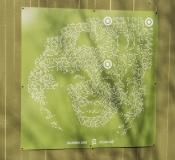 På alla plank som byggs för Västlnkens räkning, kommer man at utsmycka med konst. Det här är konst på planket utmed Södra Allégatan.